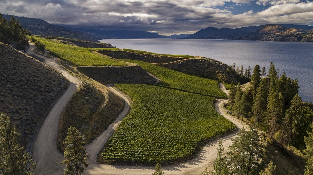 The Naramata Ranch vineyard, part of the Von Mandl Estates, which owns Martin's Lane Winery
